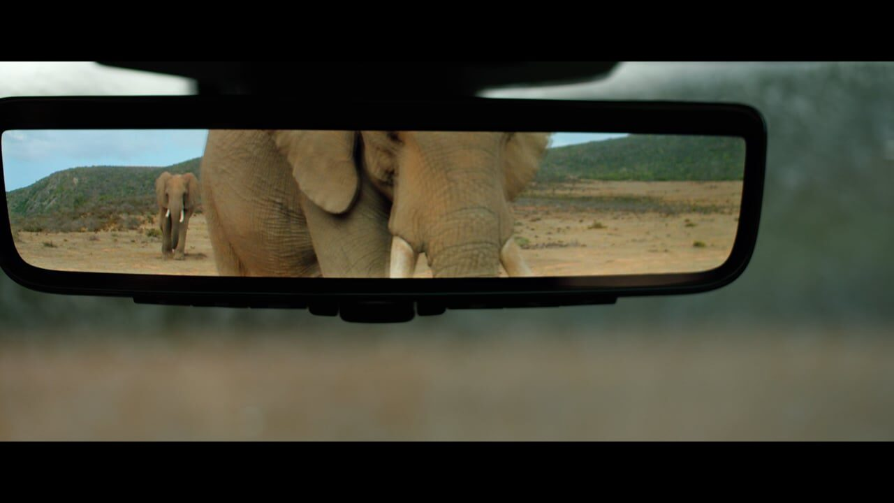 Land Rover Discovery 'Animal Car Wash'